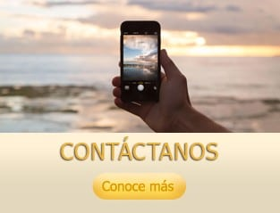 05_constellation_services_contacto