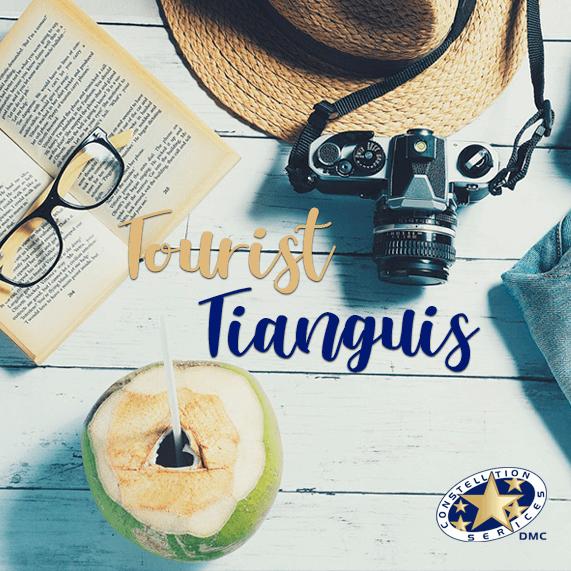 Tourist Tianguis 2019 Acapulco