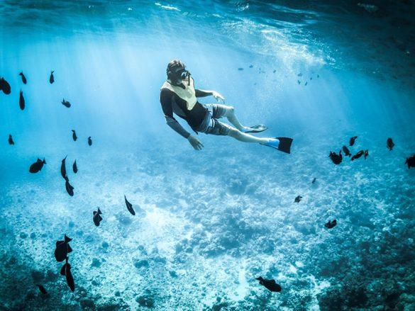 Slider 2 Buceo y Snorkel Acapulco Portada-min